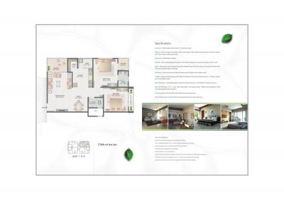 Shayona Green Brochure 8