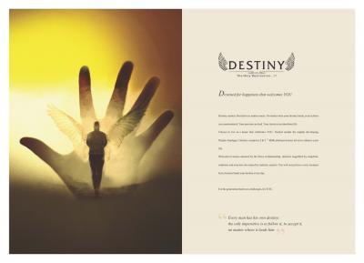 Bhojwani Destiny Brochure 2