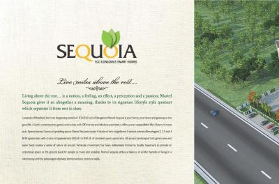 Marvel Sequoia Brochure 2