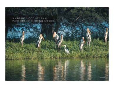 Godrej Reflections Brochure 10