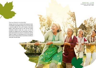 Adani The Evergreen Brochure 6