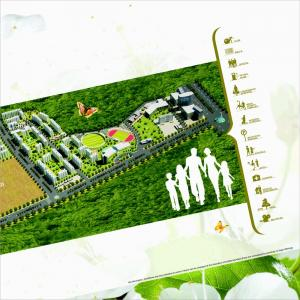 Divyansh Flora Brochure 9