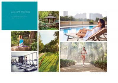 Lake Enclave Brochure 8