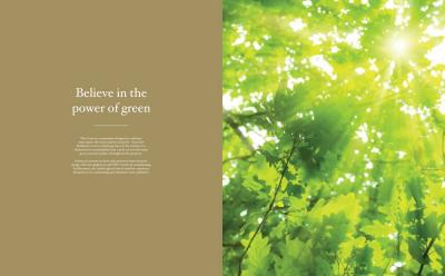 DLF The Crest Brochure 27