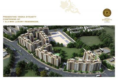 Veena Dynasty Brochure 3